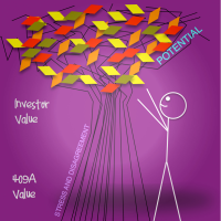 Stickman 409A and Investor Value